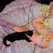 http://soutokufu.s145.xrea.com/catshit1/tko2.jpg