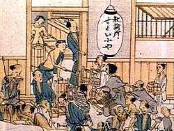 電波を求めて行列を作るNAVER日本人